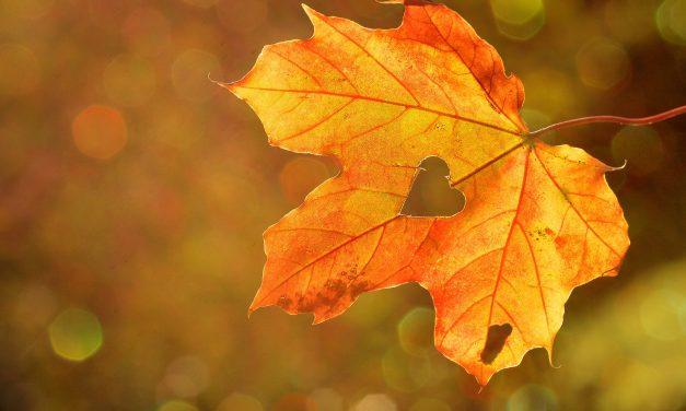 Why Autumn Is The Season Of Spirit